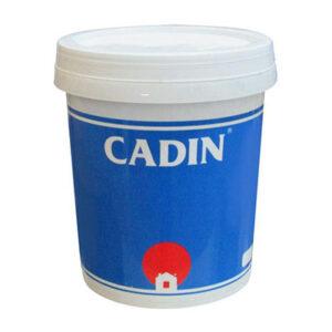 Sơn Dầu Cadin